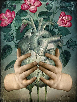 A Green Heart by Catrin Welz-Stein (2020