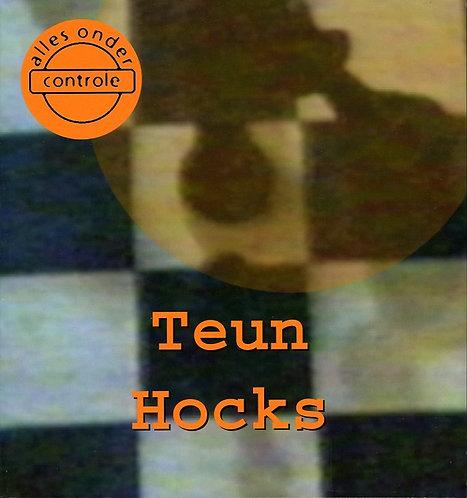 Teun Hocks - Alles onder controle