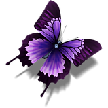 butterfly_animal_19788.png