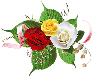 flowers-2024514_960_720.png