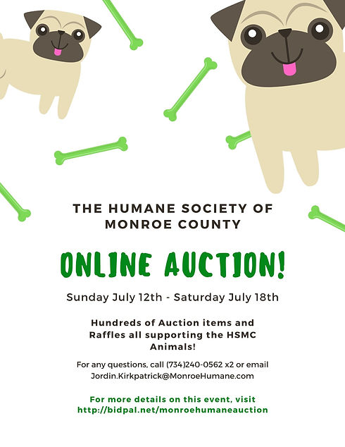 Online Auction Flier.jpg