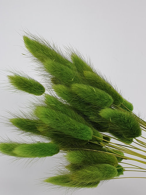 Green Bunny Tails