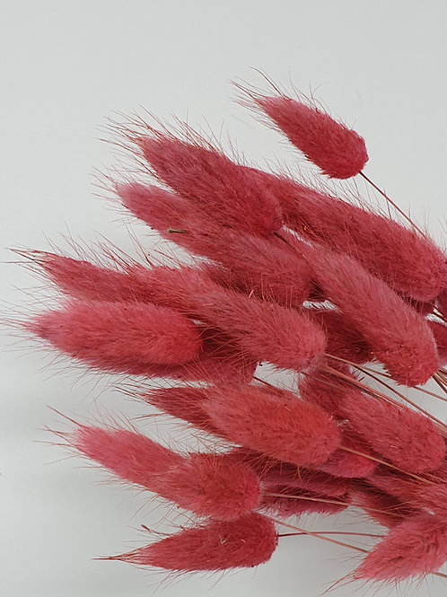 Berry Bunny Tails