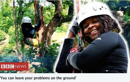 Tree Climbing Seen by Millions