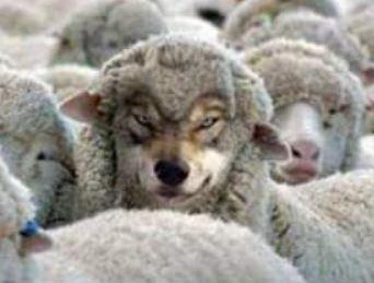 """Den """"Wolf im Schafspelz"""" entlarven..."""