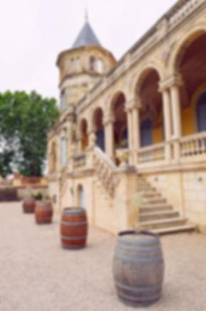 Chateau Sainte Cecile-007.JPG