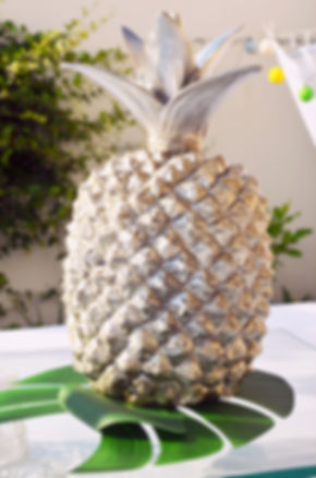 Mariage Ananas Montpellier Pineapple-001