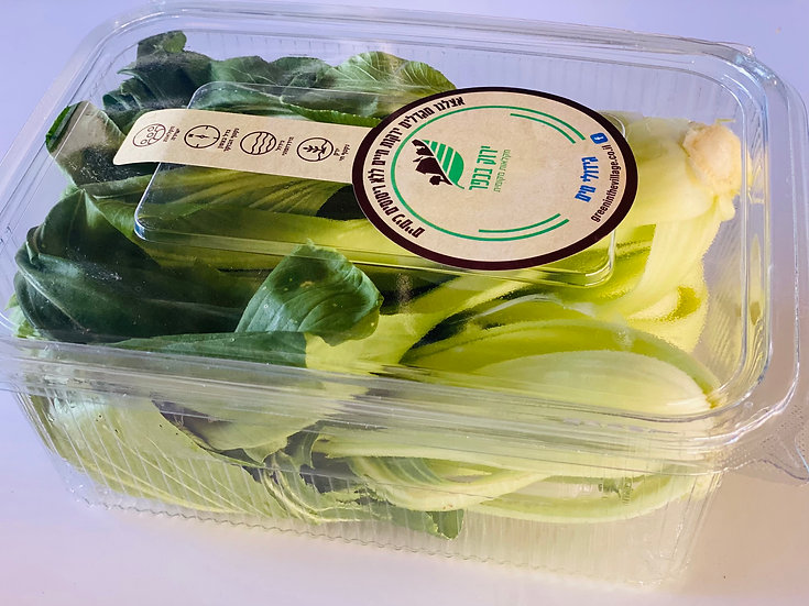 פאקצוי ירוק אורגני- זוג מארז