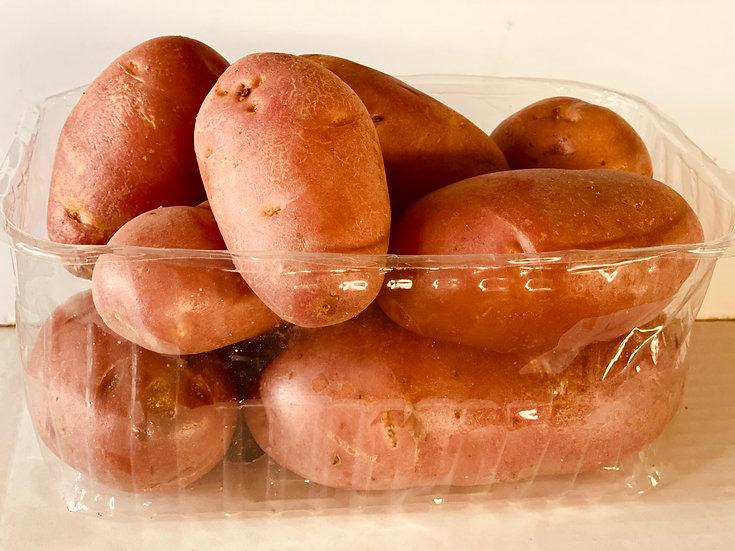 תפוח אדמה אדום-מארז