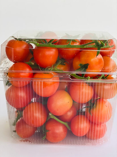 עגבניות שרי - מארז