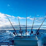 Fishing rods.jpg