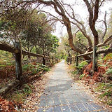 AM chinamans walkway_LR.jpg