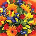flowersframes.jpg