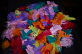 Lucile Kesterson - Feathers Galore