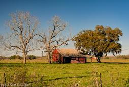 Keith Goggin - Barn Near Booth