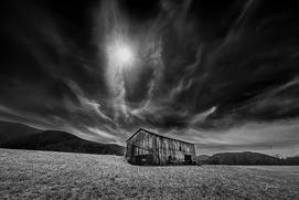 Chuck Almarez - Irving Farm