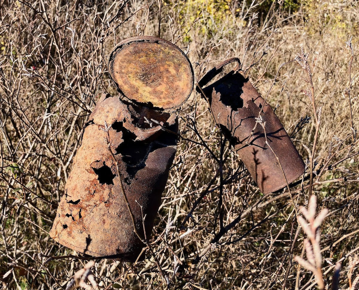 Ted Burrowes - Rust-ic Still Life #1