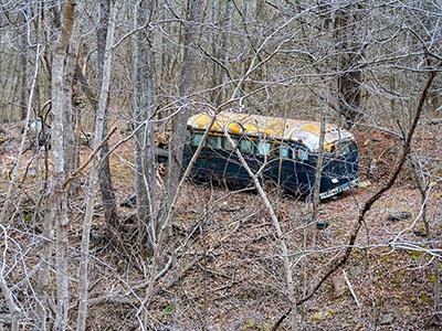 Ellen Martin - Bus in the Woods