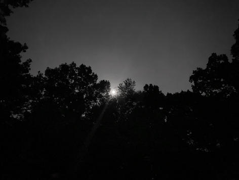 Ellen Martin - Full Moon Rising