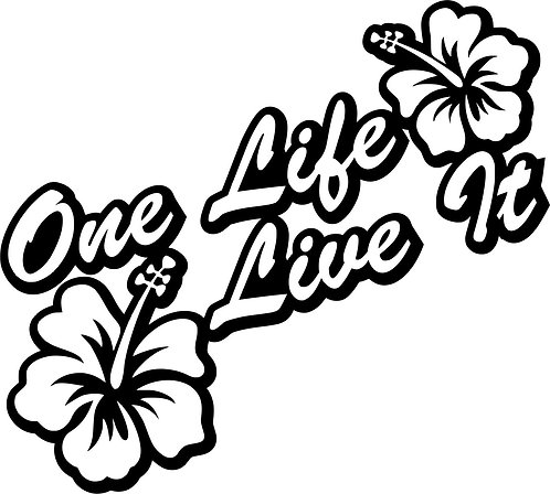 ONE LIFE LIVE IT Euro Drift Vinyl Decal Sticker VW funny sticker deca