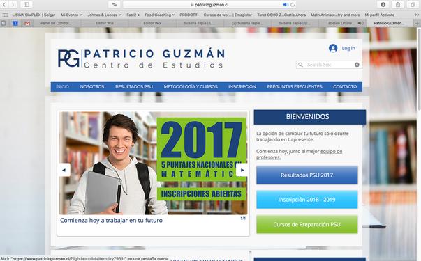 Sito Web, Patricio Guzman.