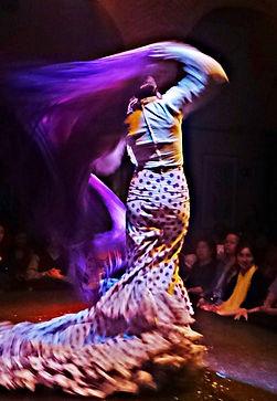 14 Flamenco 3.JPG