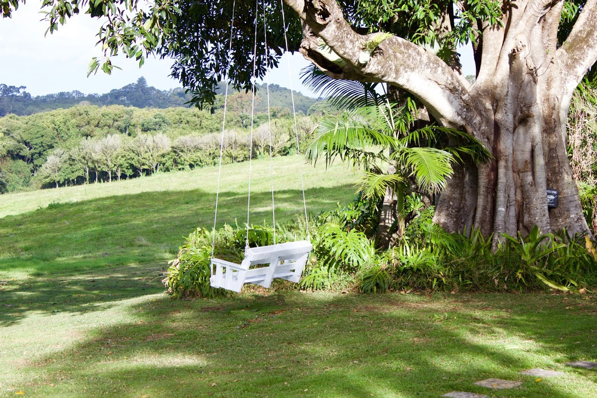 Fig Tree Swing Seat