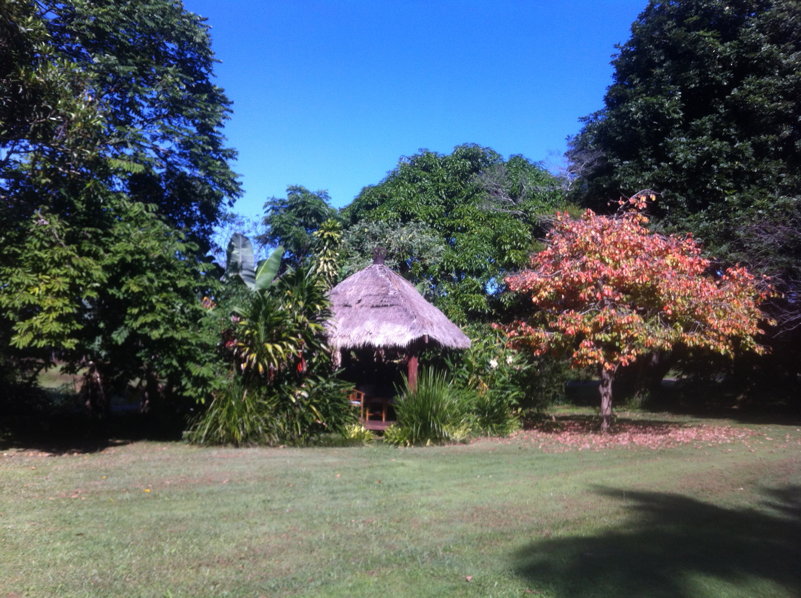 Balinese hut with autumn foliage