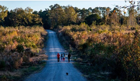 SC Voters Hoped Penny Tax Would Fix Roads in Their Communities. But USC Benefited Most.