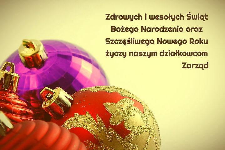 Ornaments _edited_edited.jpg