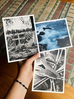 Postcard Prints | FORMAS DE LA NATURALEZA