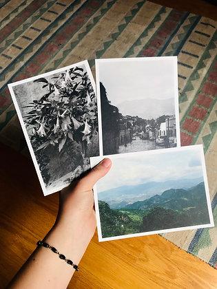 Postcard Prints | OAXACA