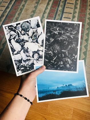 Postcard Prints | OLYMPIA