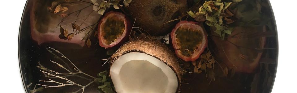coconut storysphere
