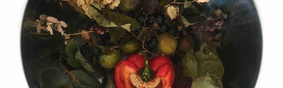 red pepper storysphere