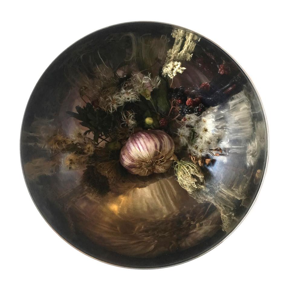 wild garlic storysphere