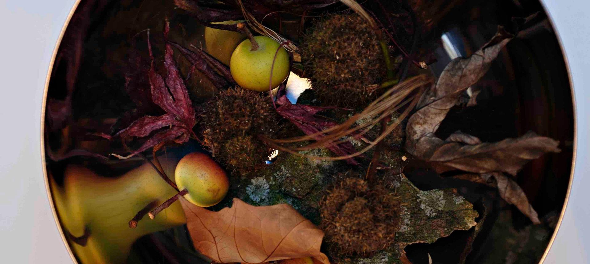 autumn seasonsphere