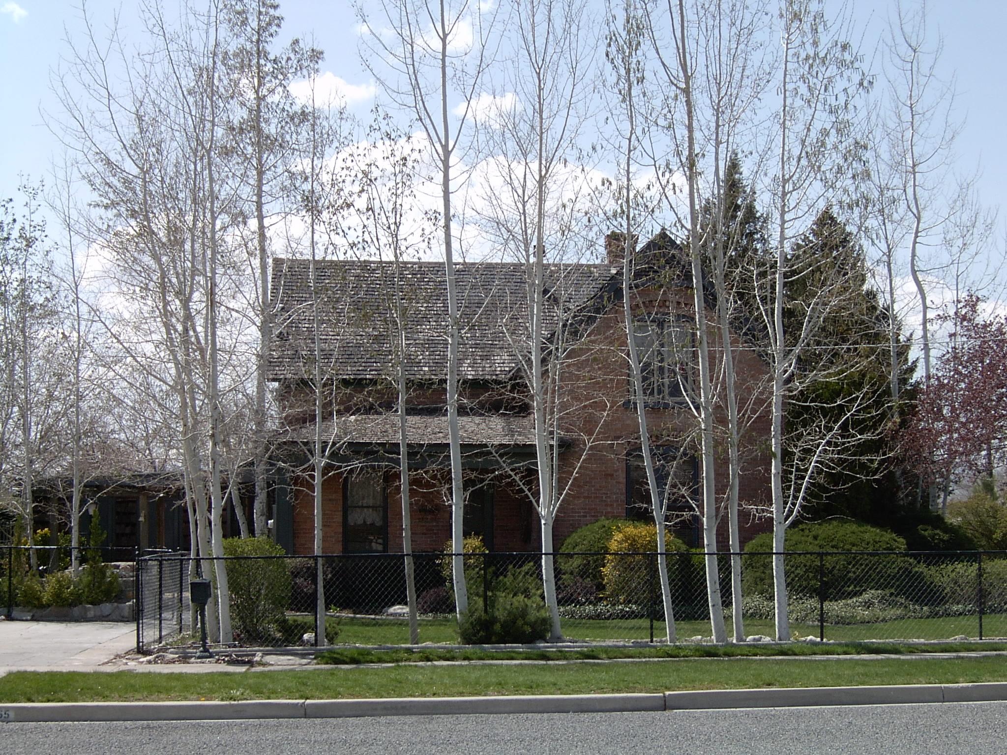 2005-1520P.JPG