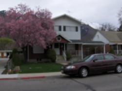 2009-04-2108P.JPG