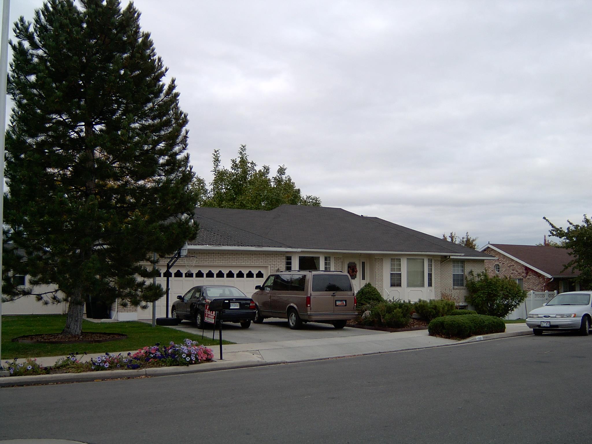 2003-1337P.JPG