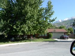 2005-1561P.JPG