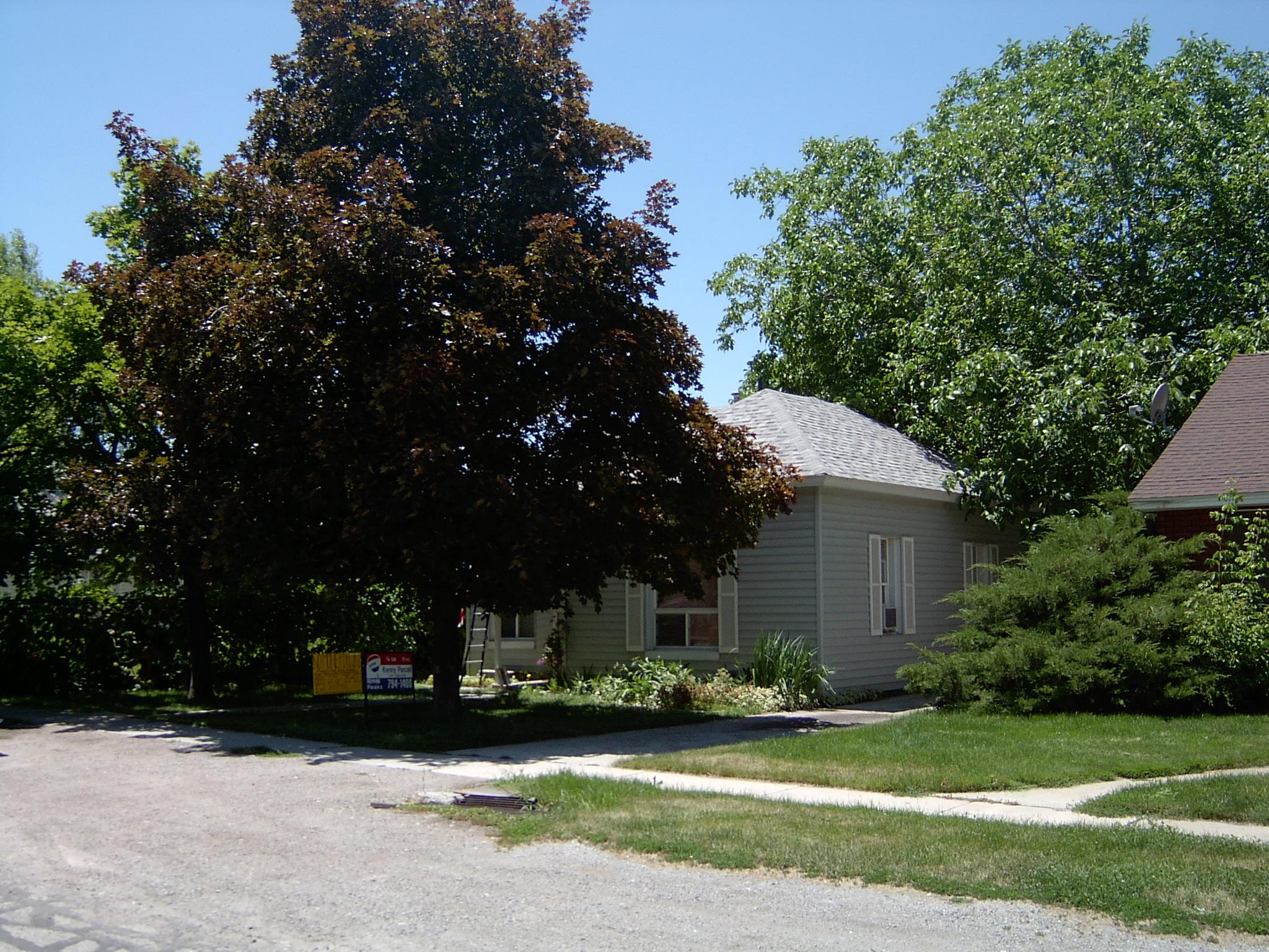 2004-1399P.JPG