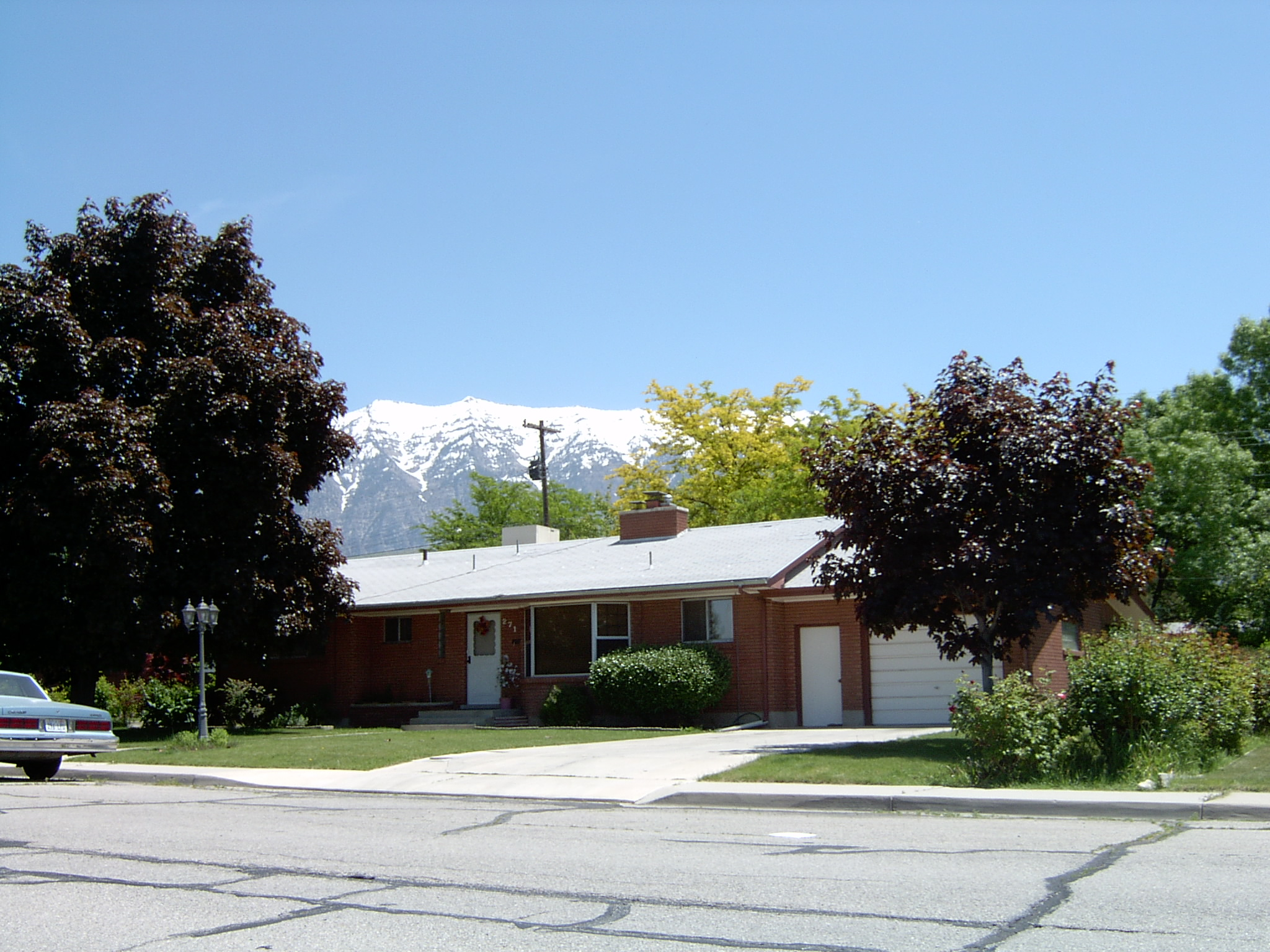 2005-1548P.JPG