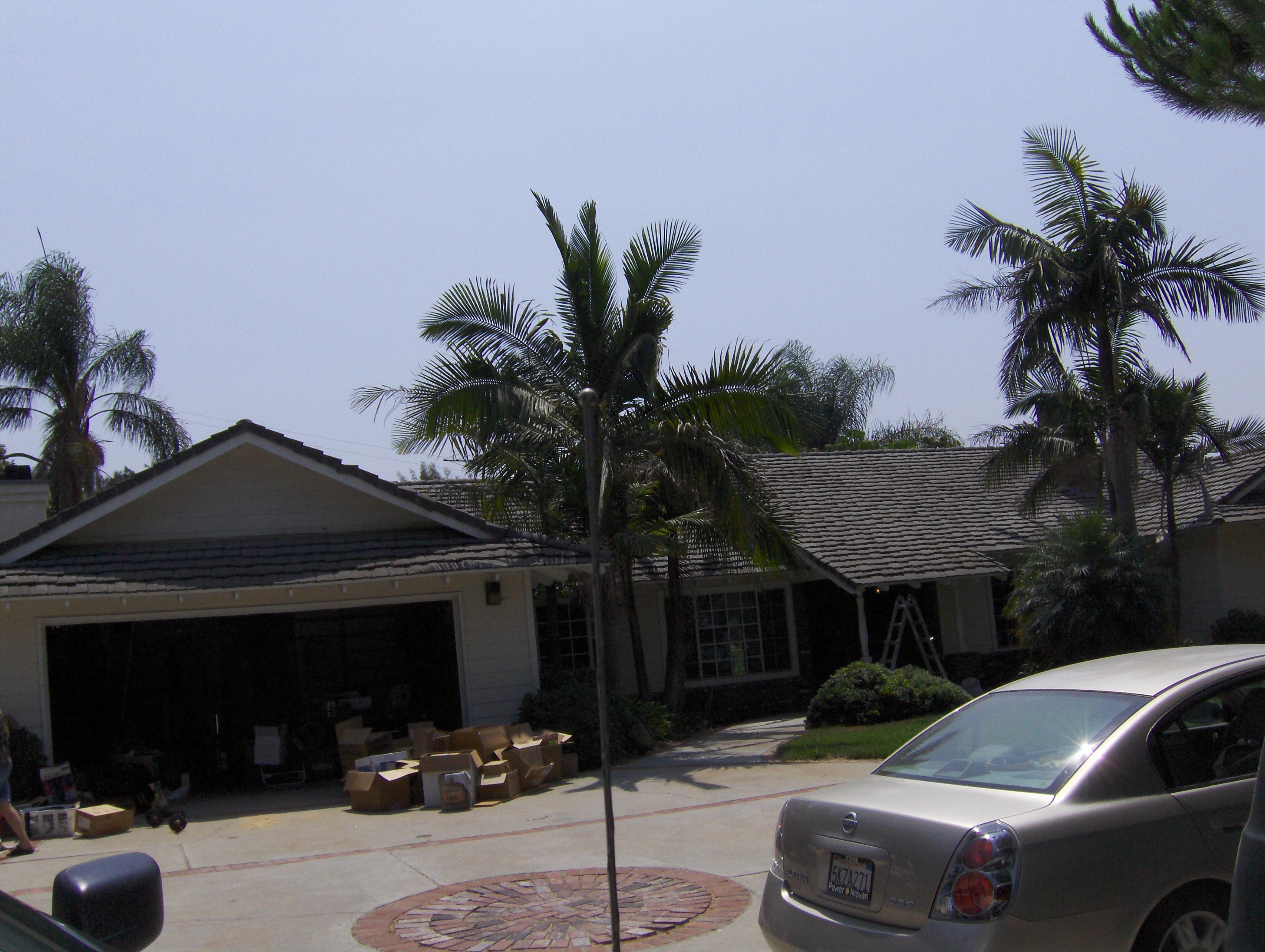 2009-08-2133-1P.JPG
