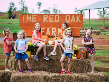 Visit The Red Oak Farm weekends in October. Family Fun for all ages!!!