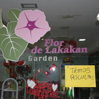 Deco Design - Flor de Lakakam