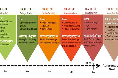 Academia Business Leaders - Inovação Ágil em 90 dias