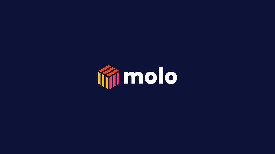 molo porfolio_Mesa de trabajo 1.jpg