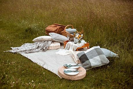 Romantic Couples Picnic Ham Hill