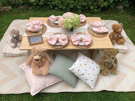 Teddy Bears Picnic Party, Somerset